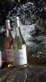 Domaine Vico Rosé & Blanc bien frais