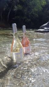 Domaine Vico Rosé & Blanc baignants dans la Restonica