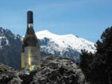 Domaine Vico blanc - restonica